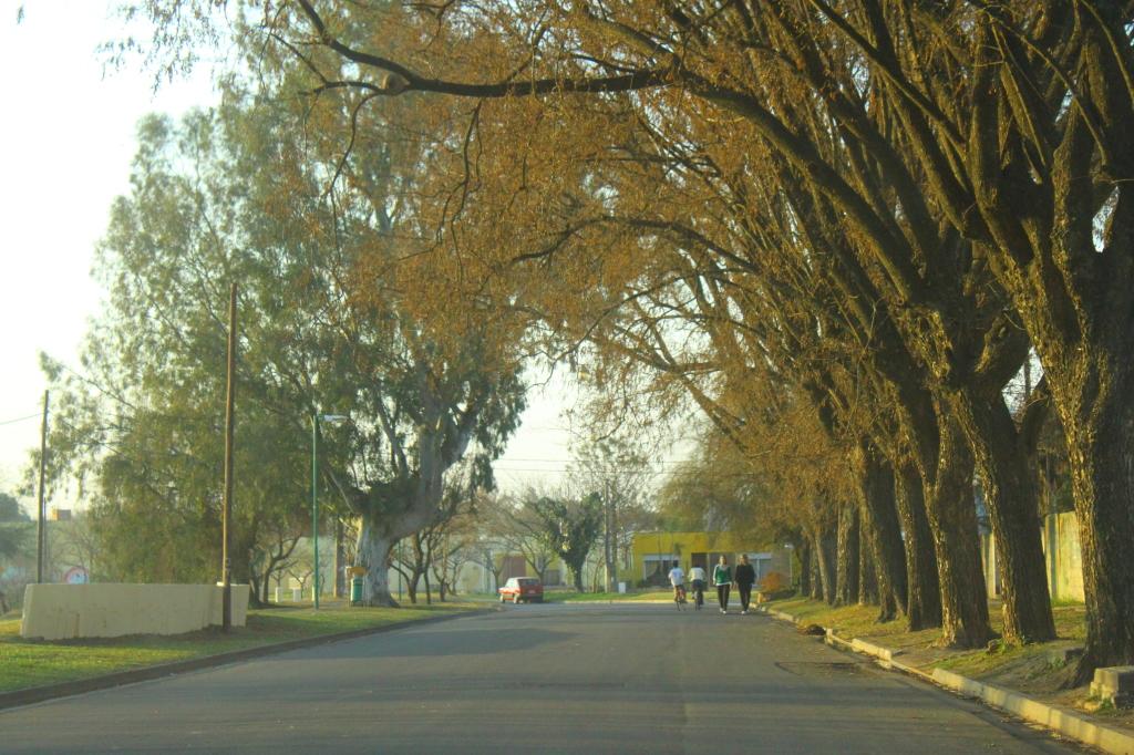 Avenida la Costanera